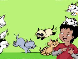Carlos Counts Kittens
