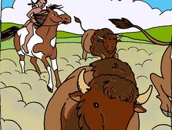 chasse au bison, La