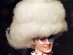 Wild and Wacky World of Wigs