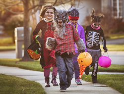 History of Halloween, The