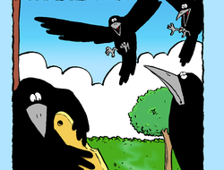 Crows Share a Pie