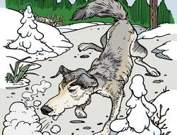 tres chanchitos: La historia del lobo, Los