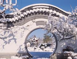 jardín chino, En un